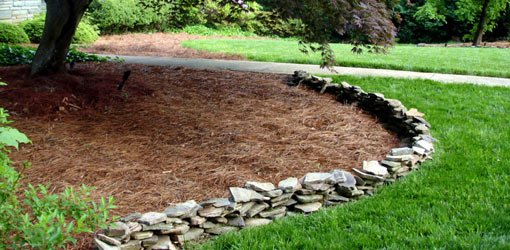 Why January Is A Good Month To Mulch Beyond The Curb