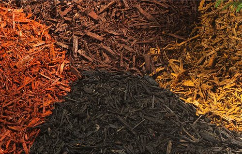 Why January is a good month to mulch